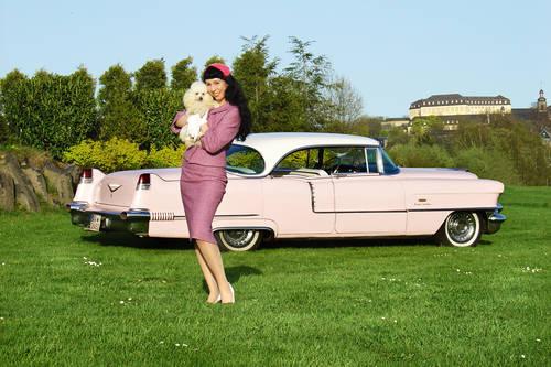 1956 Cadillac Sedan de Ville  For Sale (picture 6 of 6)