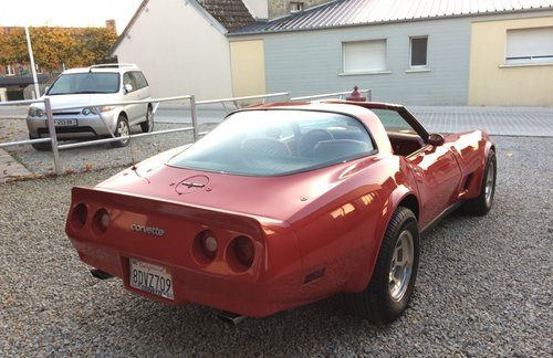 1981 Corvette C3 For Sale (picture 4 of 5)