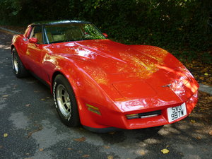 1981 81 CORVETTE AUTO For Sale