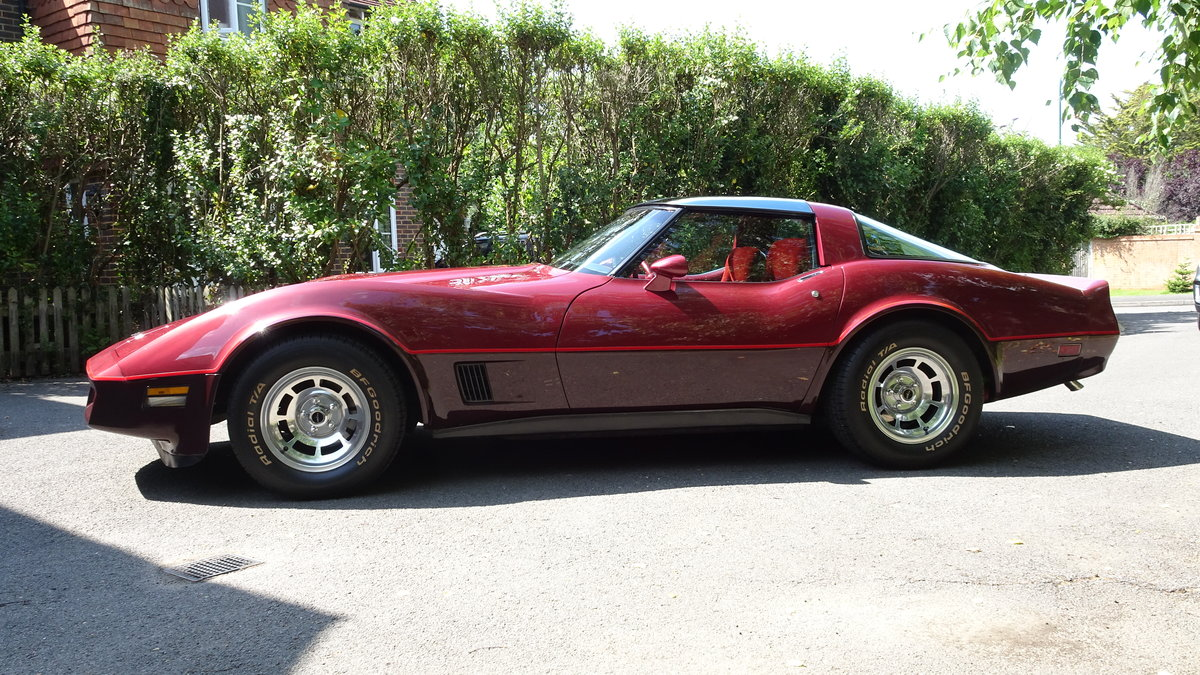 1981 Chevrolet Corvette low miles and original For Sale (picture 1 of 6)