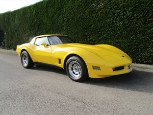 Chevrolet Corvette-1981-Immaculate-very well maintained SOLD