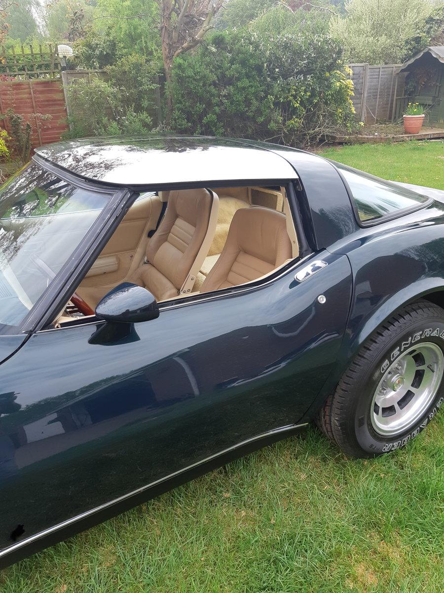 1980 Corvette very rare L82 For Sale (picture 4 of 4)