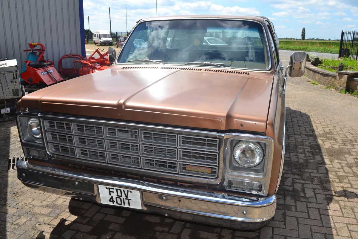 1979 Chevrolet Chevy C10 For Sale (picture 4 of 6)