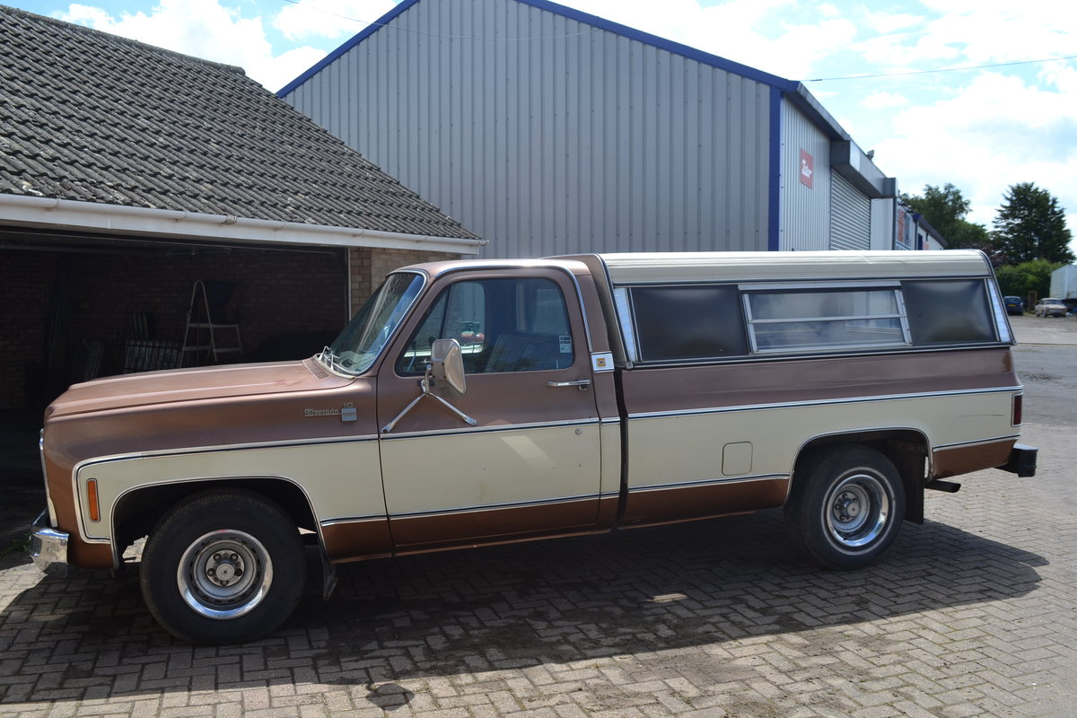 1979 Chevrolet Chevy C10 For Sale (picture 5 of 6)