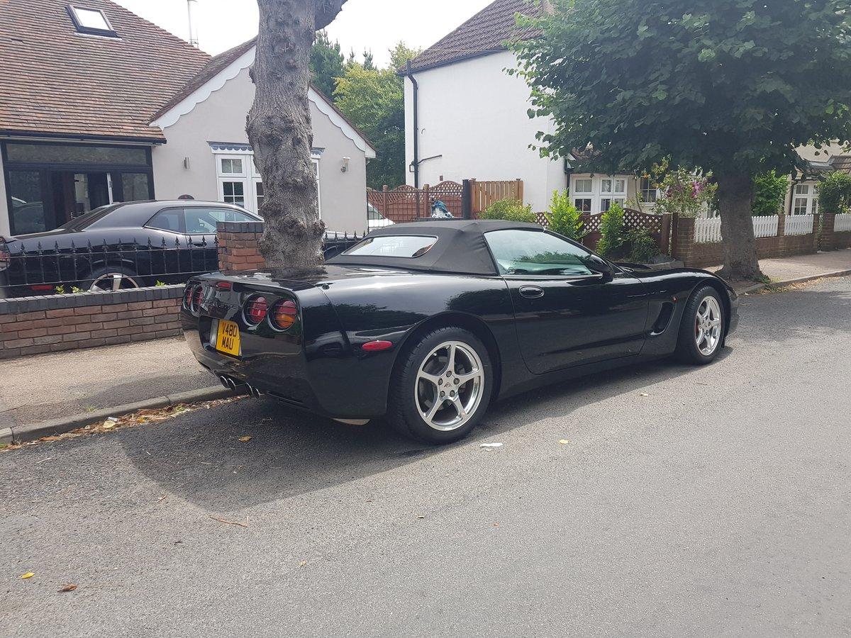 2000 Corvette C5 Convertible For Sale (picture 5 of 6)