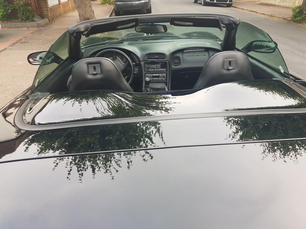 2000 Corvette C5 Convertible For Sale (picture 6 of 6)