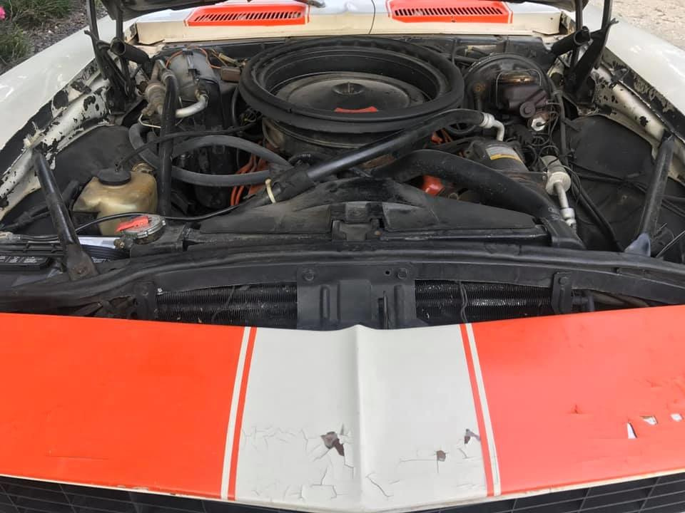 1969 Chevrolet Camaro Z11 Indy 500 Pace Car Convertible For Sale (picture 2 of 6)