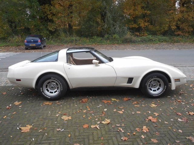 1981 CHEVROLET CORVETTE C3 TARGA For Sale (picture 6 of 6)