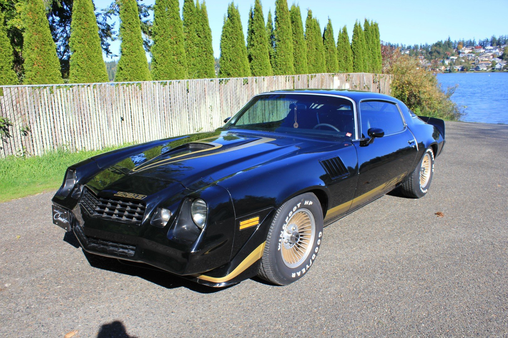 1979 Chevrolet Camaro Z28 For Sale by Auction (picture 1 of 5)