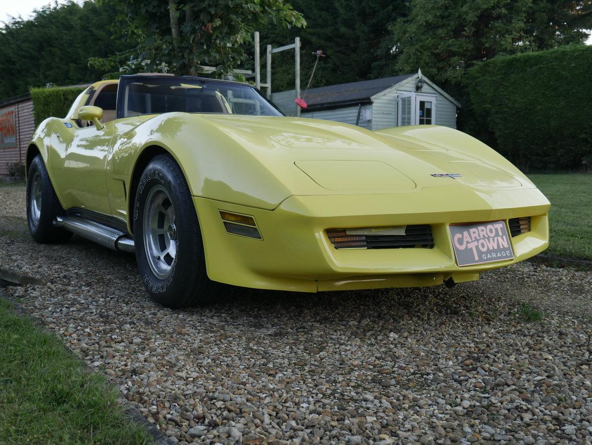 1981 Chevrolet Corvette C3 5.7 V8 Absolutely Stunning For Sale (picture 3 of 6)
