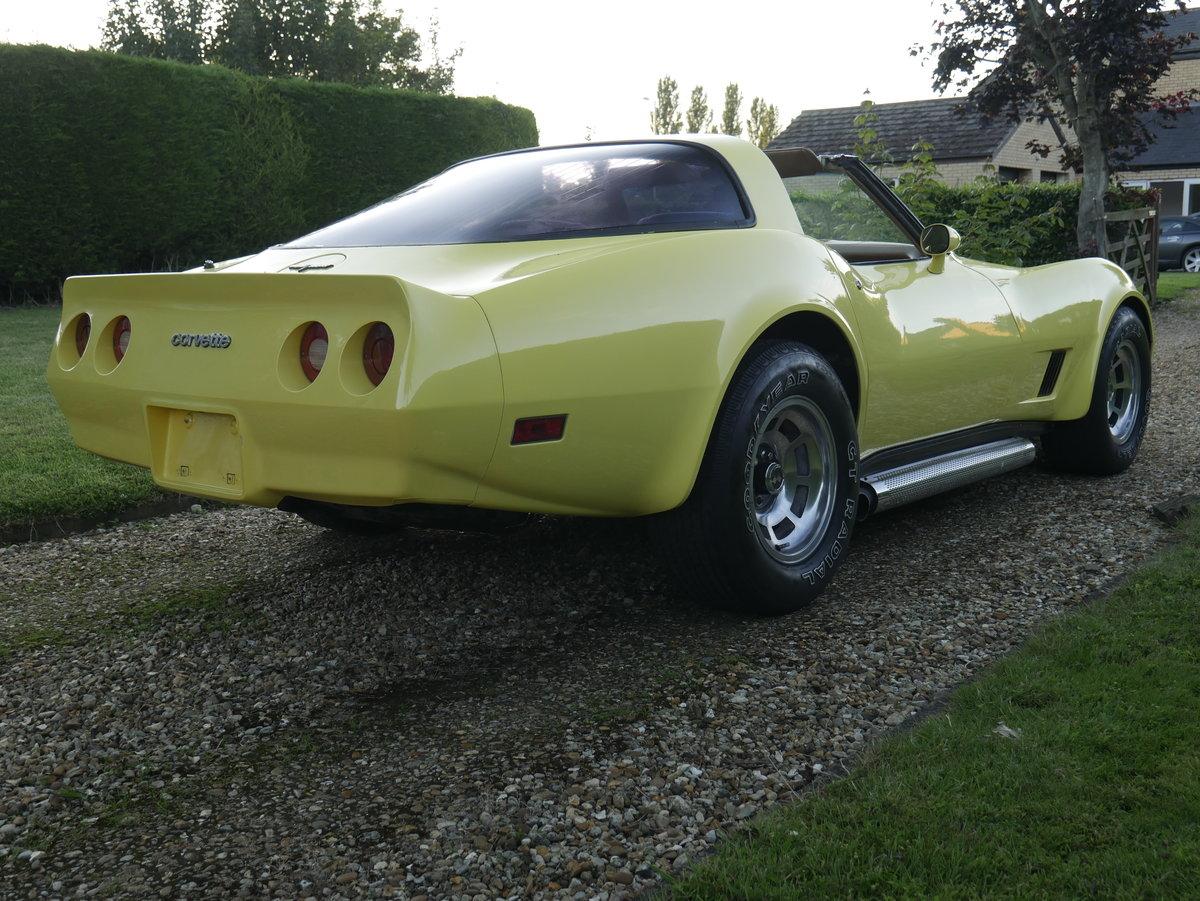 1981 Chevrolet Corvette C3 5.7 V8 Absolutely Stunning For Sale (picture 4 of 6)