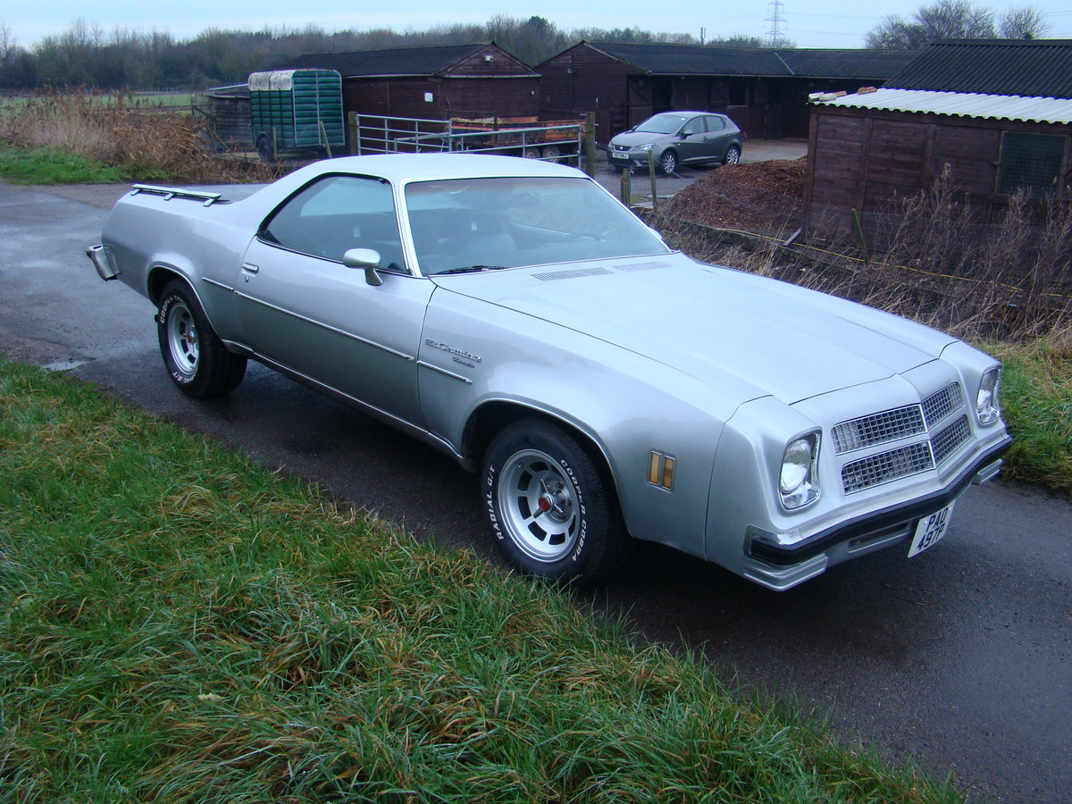 1976 Chevrolet El Camino For Sale (picture 2 of 12)