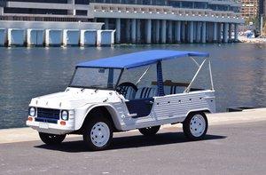 1983 Citroën Méhari For Sale by Auction