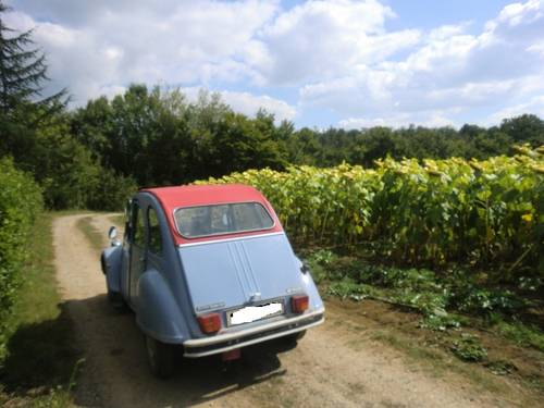 1986 CITROEN 2 CV 6 SPECIAL 602cc LHD For Sale (picture 6 of 6)