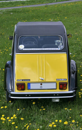 1982 Citroen 2CV Charleston For Sale (picture 3 of 6)
