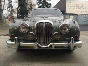 1964 Daimler For Sale