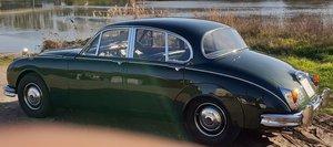 1965 DAIMLER JAGUAR 2.5 V8 RHD. STUNNING CONDITION For Sale