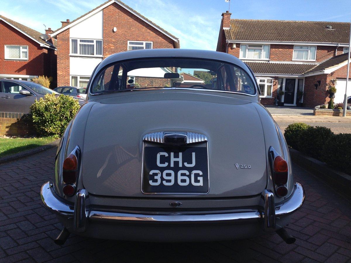 1969 Daimler 250 v8 SOLD (picture 4 of 6)