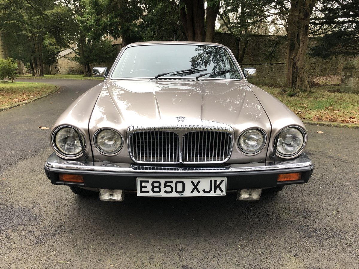 1988 Daimler Double Six For Sale (picture 5 of 6)