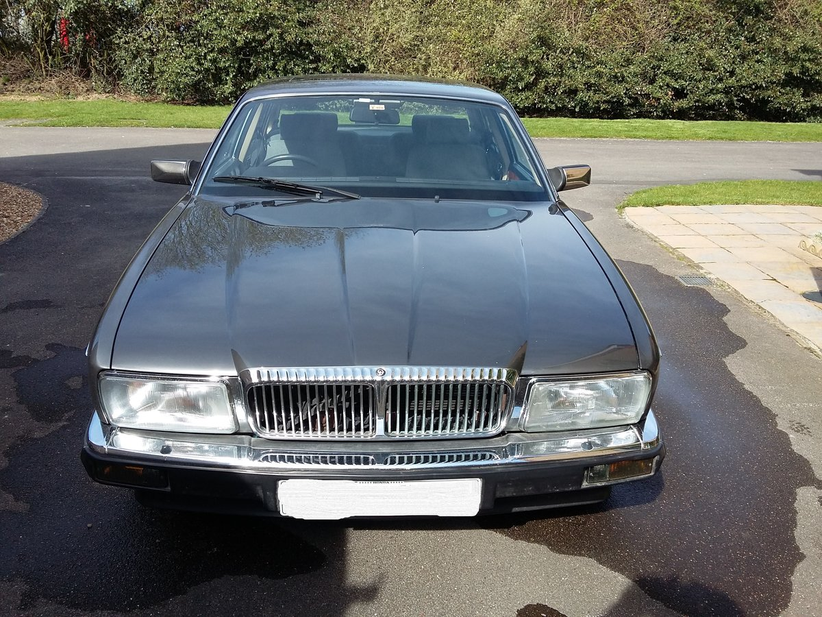 1987 Beautiful Dorchester grey Daimler xj40 SOLD (picture 1 of 6)