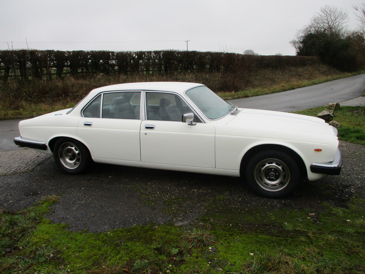 1981 Daimler Sovereign Series three 4.2 Automatic For Sale (picture 4 of 10)