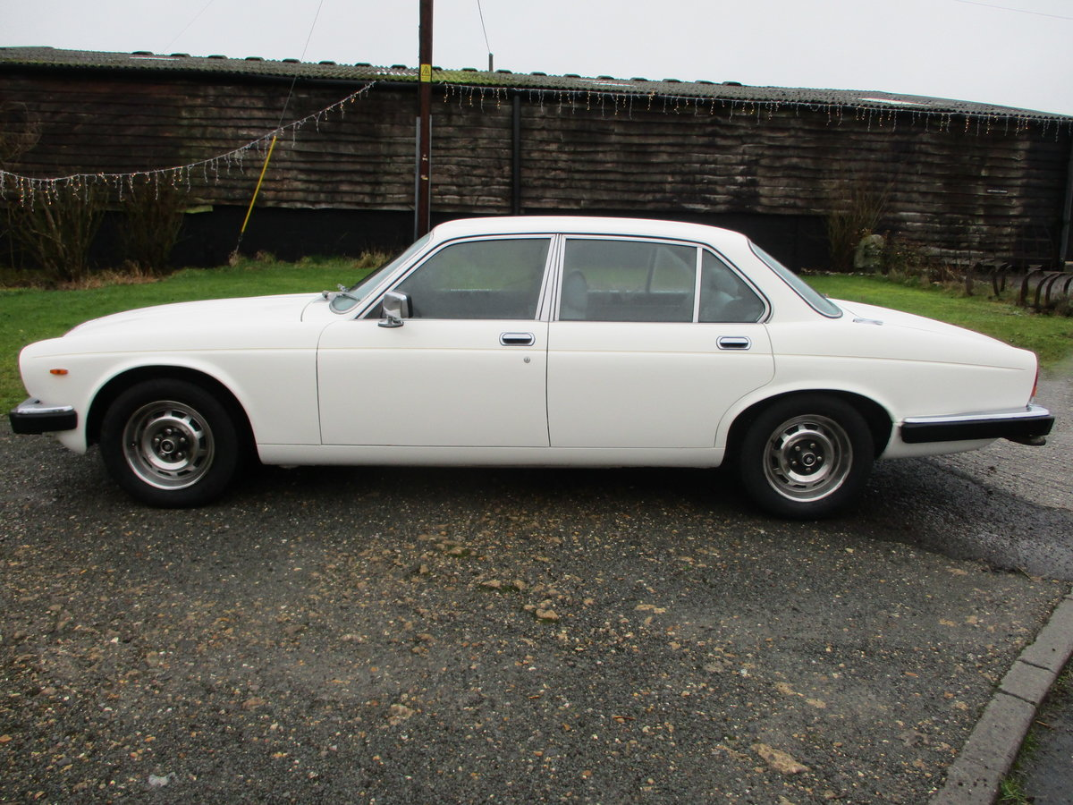 1981 Daimler Sovereign Series three 4.2 Automatic For Sale (picture 5 of 10)