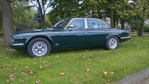 1991 Daimler Double Six Series III Auto For Sale (picture 5 of 6)