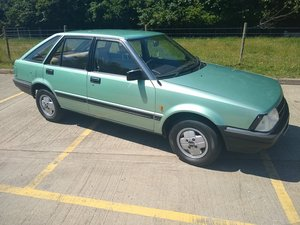 1982 Datsun Stanza 29,000 miles for Auction SOLD by Auction