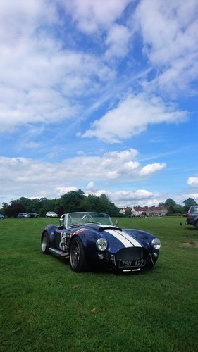 2003 Stunning Dax Cobra 6.3 V8 For Sale (picture 5 of 6)