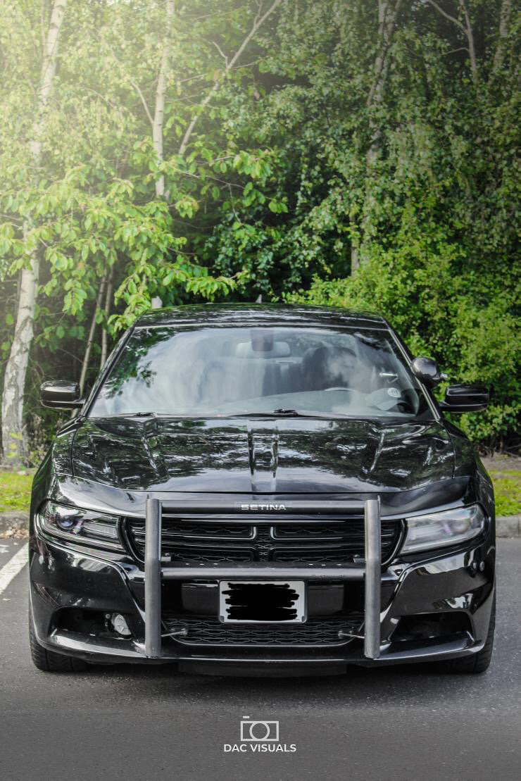 2015 Dodge Charger 5.7 v8 Hemi AWD For Sale (picture 2 of 6)