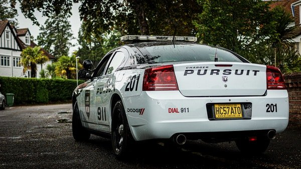 2008 Dodge Charger Police Pursuit 5.7 HEMI For Sale (picture 3 of 6)