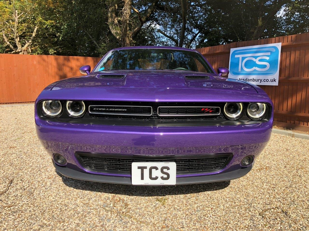 2016 Challenger R/T HEMI V8 in Plumb Crazy Purple For Sale (picture 3 of 6)