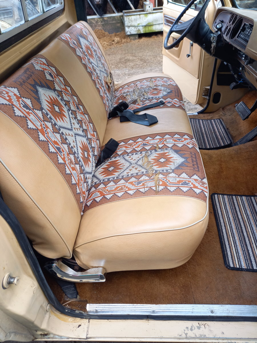 1979 Dodge 150 rare Palamino edition For Sale (picture 6 of 12)