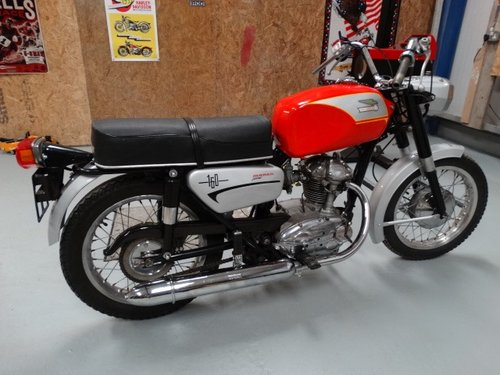 1970 Ducati 160 Monza Jr For Sale (picture 2 of 6)
