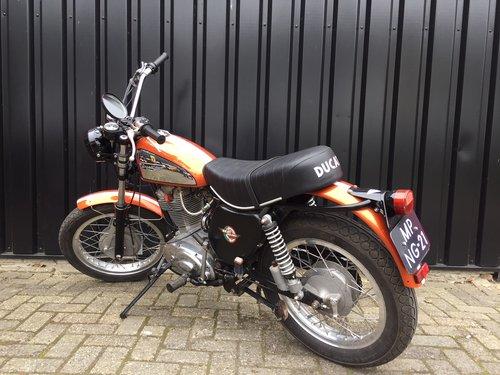 1975 Ducati 450 Scrambler SOLD (picture 6 of 6)