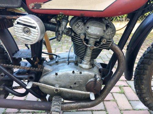 1964 Ducati Elite 200 Cross For Sale (picture 5 of 6)