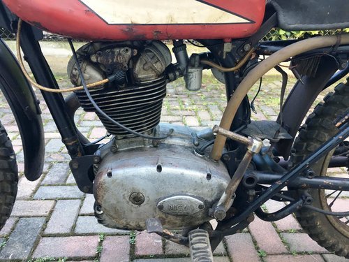 1964 Ducati Elite 200 Cross For Sale (picture 6 of 6)