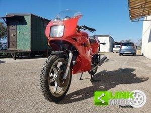 Ducati Pantah 350 XL Desmo 1983