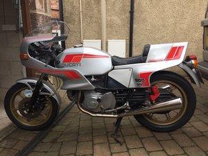1981 Ducati Pantah 600