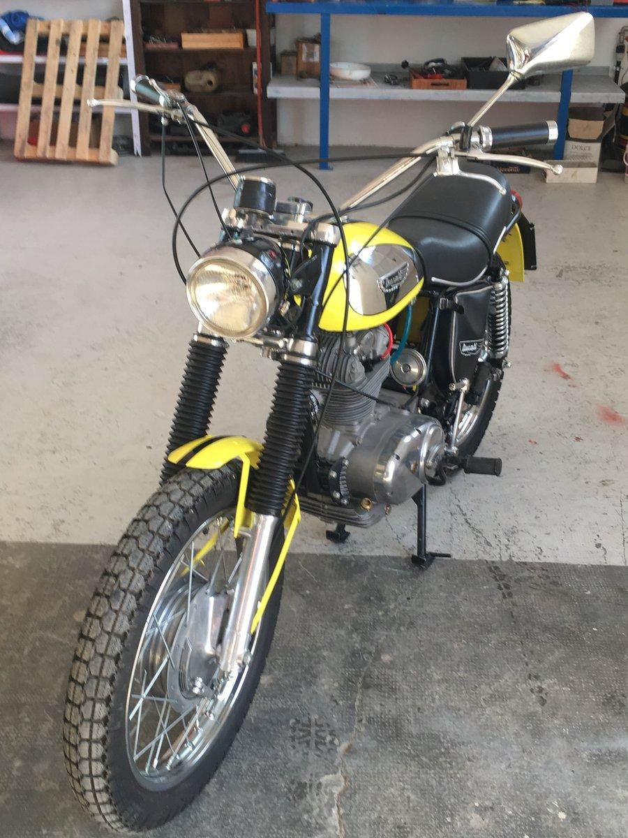 1969 Ducati 250 Scrambler For Sale (picture 6 of 6)
