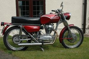 1967 350 ohc Ducati Sebring