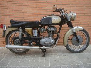 ducati 175 For Sale
