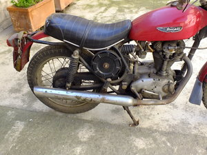 1984 DUCATI 350 Scrambler