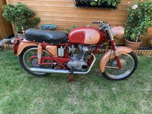 1962 Ducati TS175 Bevel Drive Narrow Case Moto Giro