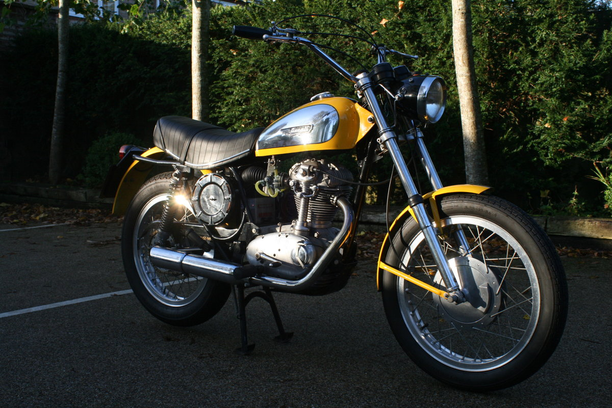 1976 STUNNING DUCATI 350 SCRAMBLER! For Sale (picture 2 of 6)