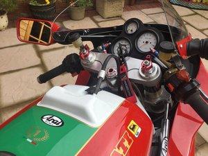 1993 Ducati 851 Raymond Roche replica