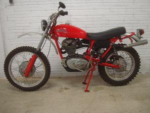 1971 Ducati 350 TT