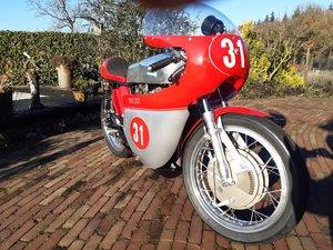 1967 Ducati Single 350 SCD  For Sale
