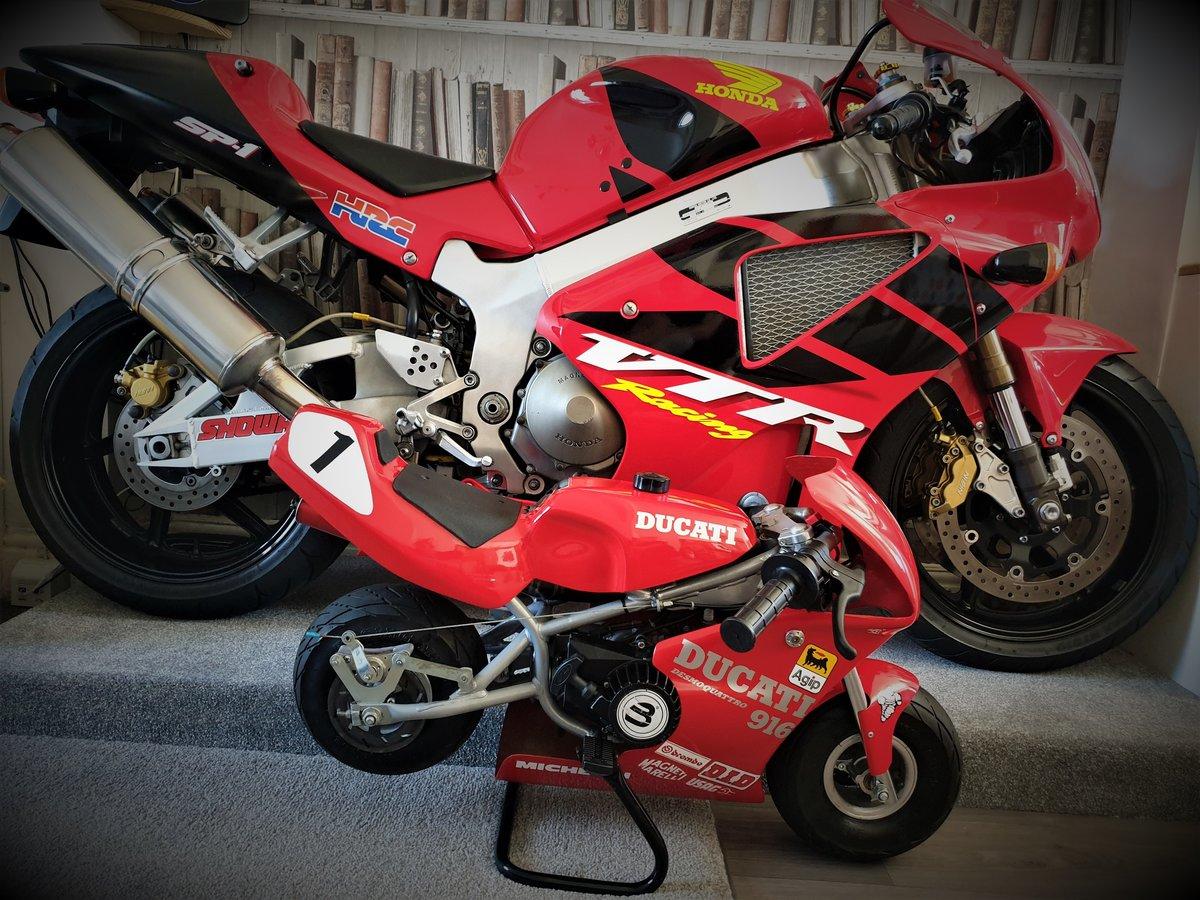 2000 BLATA MINI MOTO, DUCATI 916 COLOURS. For Sale (picture 6 of 6)