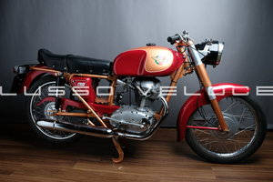 1956 Ducati 175 TS restored and Giro eligible